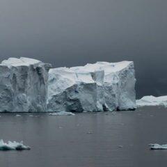 Croisière en Antarctique?
