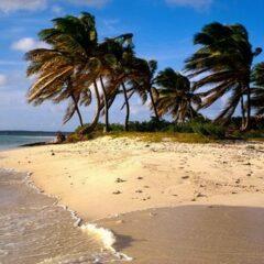Croisières aux Antilles, aux Canaries et transatlantiques à bord de Silversea Cruises.